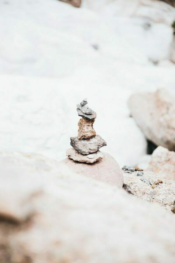 gray and white animal figurine on white rock